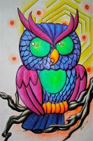 Owl by knezak
