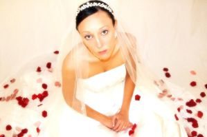 Bridal Portrait Photography 2 by divineattack