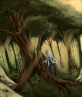 Walking on the forest by Miamelly