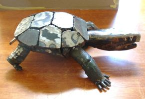 side view of my turtle by edstuff