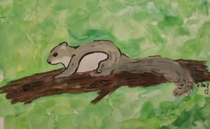 Flying Squirrel by CaledonCat
