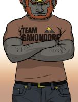 Team Ganondorf by silverwolf05