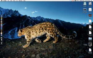 Snow Leopard SS October 09 by Chairollin1