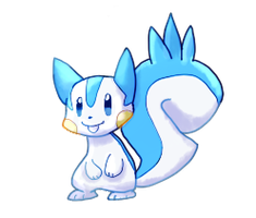 Pachirisu by sweating