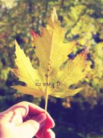 First day of autumn... by anchiix