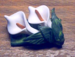 White Calla Lillies by sississweets