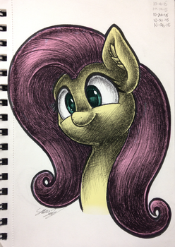 Fluttershy (Colored) by sheandog