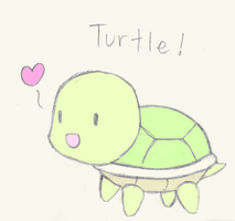 Turtle by gaming-fanchild