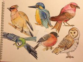 British birds tattoo flash by Unmei-Wo-Hayamete