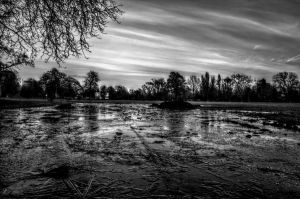 Icy Puddle Monochrome by johnwaymont