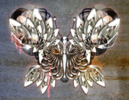 SSS_Auto Butterfly by chromosphere