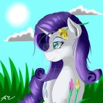 Rarity at Sunny day by Camaine