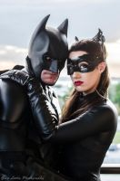 Batman and Selina Kyle 2 by greglarro