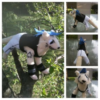 Black*Star Cat Plushie by FlashTheBeast