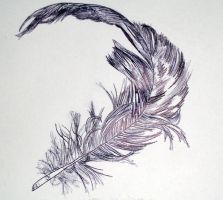 feather by love-hate-love