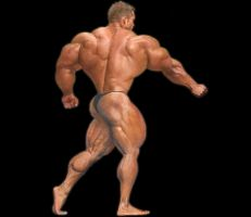 Massive Back by n-o-n-a-m-e