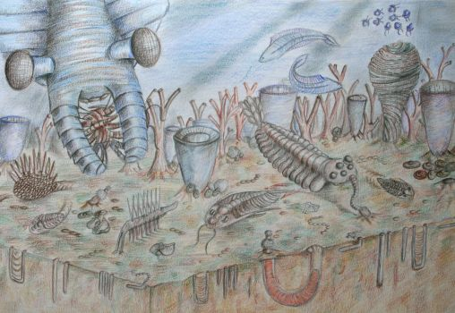 Cambrian Seascape by Leannee1993