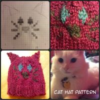 cat knitted hat by iamB-bat