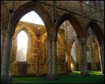 Tintern Gold by parallel-pam