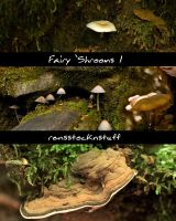 Fairy 'Shrooms 1 by rensstocknstuff
