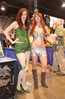 Poison Ivy and Red Sonja by ebonneau