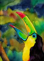 Transcendental Toucan by PaintMyWorldRainbow