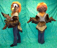 Bearded Vulture Partial by temperance
