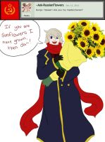 Question 39: Mother Russia's Sunflowers~ by Ask-Soviet-Russia