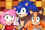 Let's Celebrate Sonic Boom! by HavocGirl