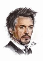 Robert Downey by pegasus97