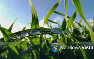 Morning Dew Wall For Vista by Sniper115A3