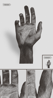 Graphics Tablet  -  Hand by h3design