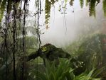 Lizardman in the misty jungle by AyaneMatrix
