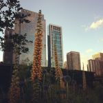 Downtown Chicago by jduageh