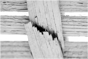 cracked BW by linkq