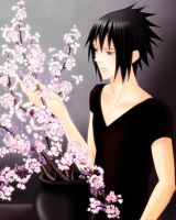 Sasuke and Cherry Blossoms by romizoh373