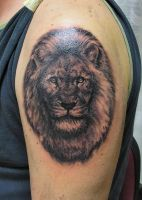Lion tatto by primitive-art
