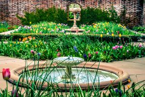 Tryon Palace Garden by MrsChibi