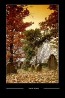 Cemetery by tomsumartin