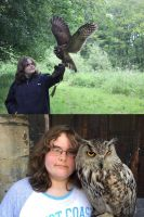 Me and some Owls by ProjectOWL