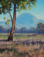Morning Light Tumut by artsaus