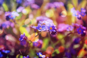 Everlasting Love by Ibilicious