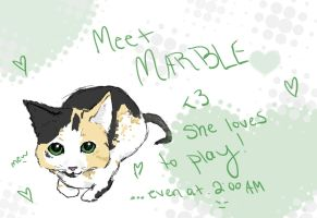Meet Marble by Hasanti