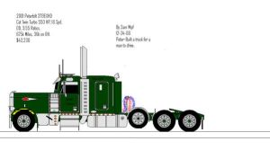 Peterbilt Tri-Axle- Ms Paint by 18KyBuschfan