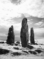 Glengorm Standing Stones, Mull by princely