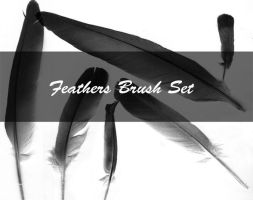 Feather Brush Set Stamps by Kittyd-Stock