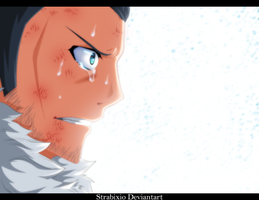 Fairy tail 393 - Silver by strabixio