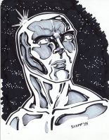 Silver Surfer by TheElysian
