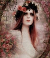 Favole Rose by Bohemiart