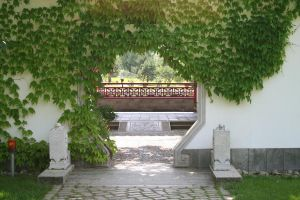 chinese garden I by two-ladies-stocks